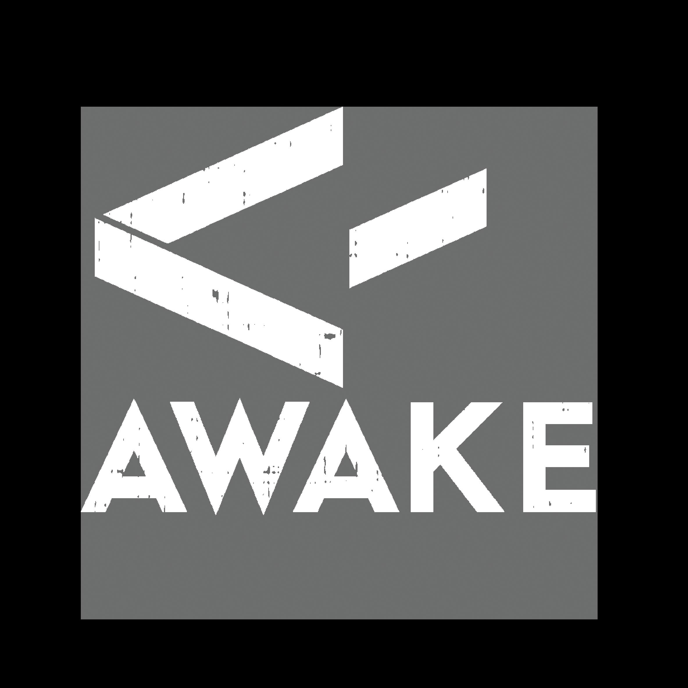 Awake VR Experience